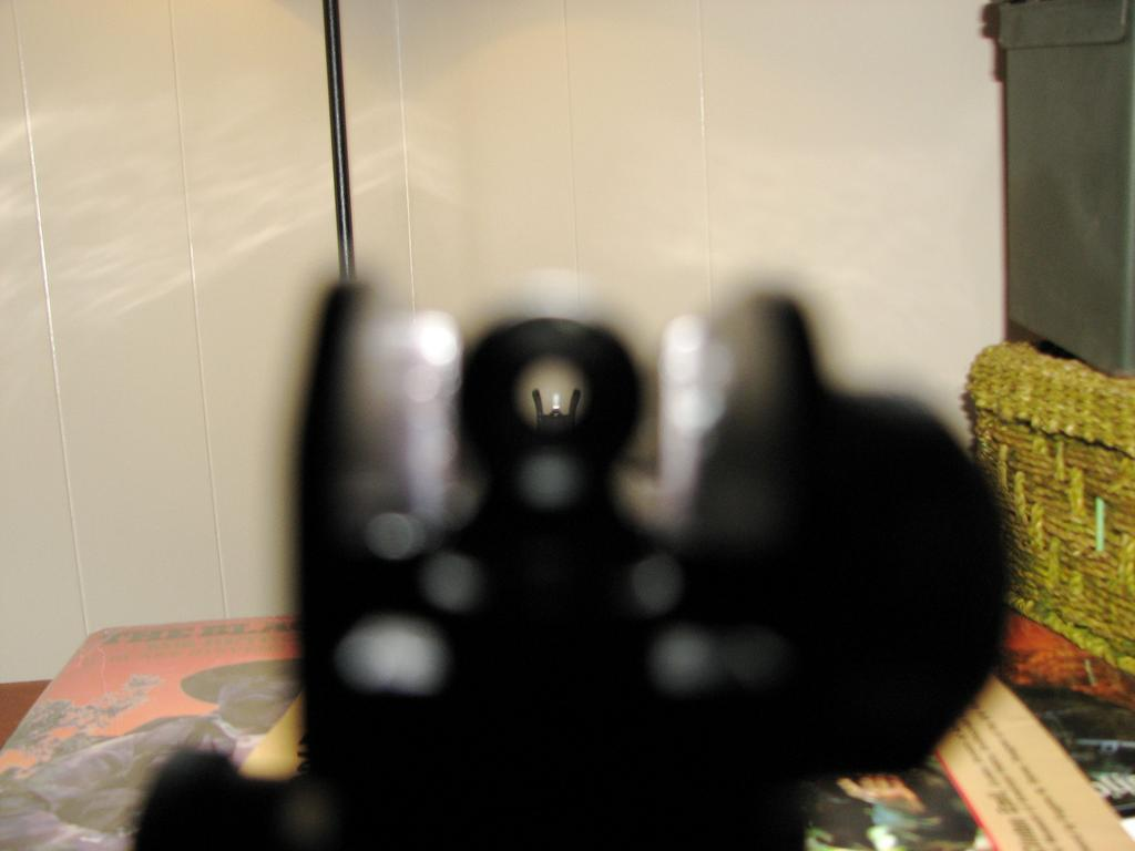 AR15_Sight_Picture.jpg
