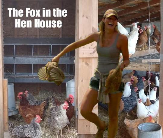 ChelseaMeissnerFoxInTheHenHouse.jpg