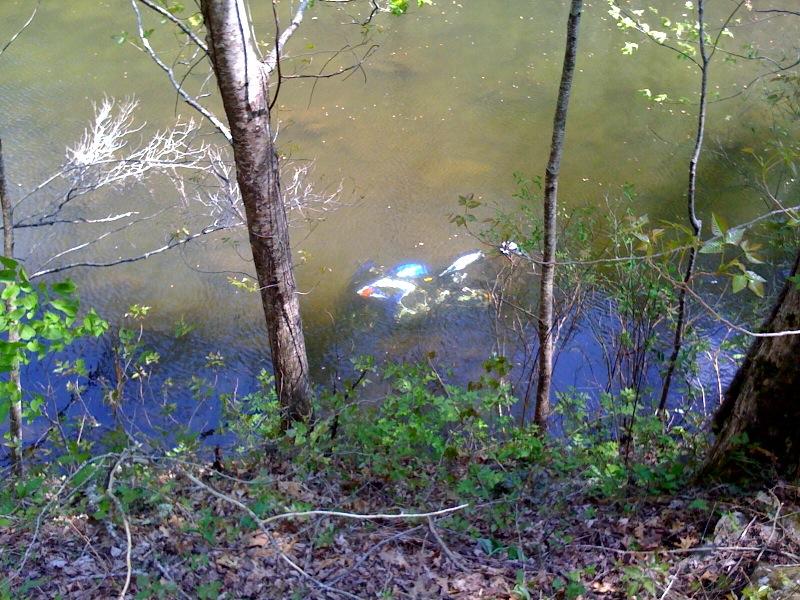 GSXR River.jpg