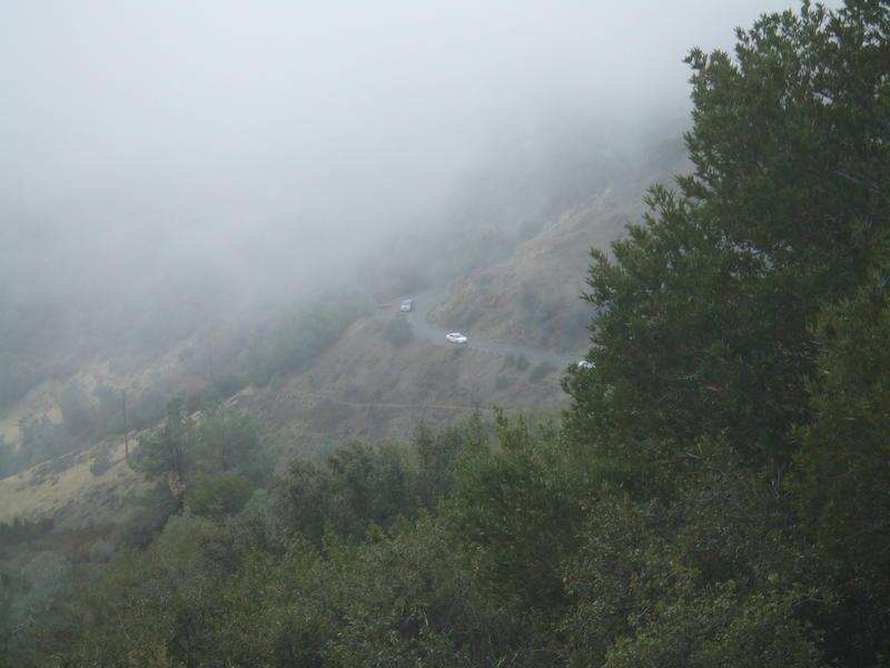 Mt. Diablo dec 08 002.jpg