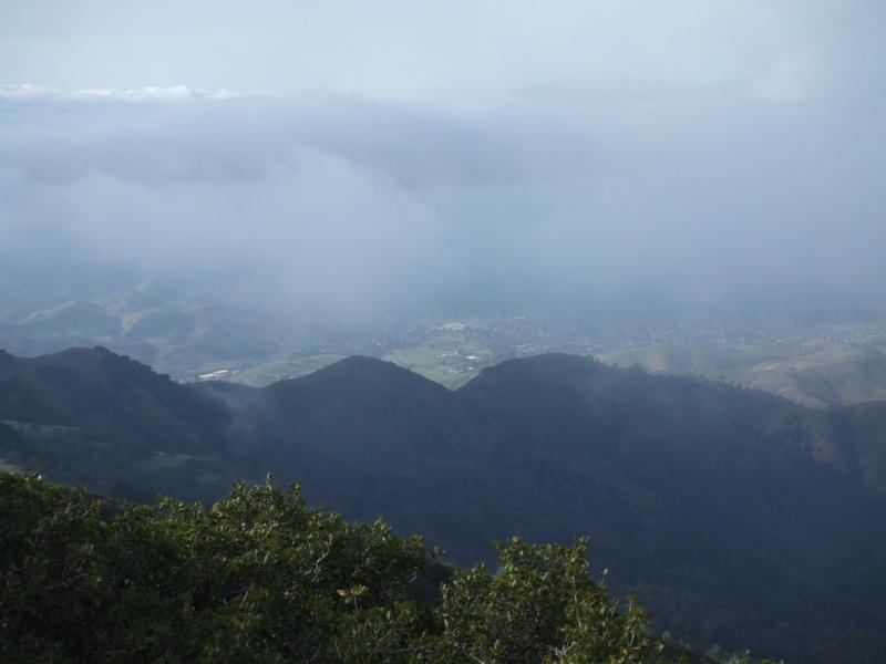 Mt. Diablo dec 08 016.jpg