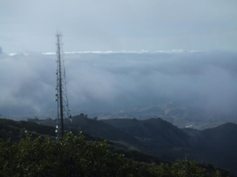 Mt. Diablo dec 08 017.jpg
