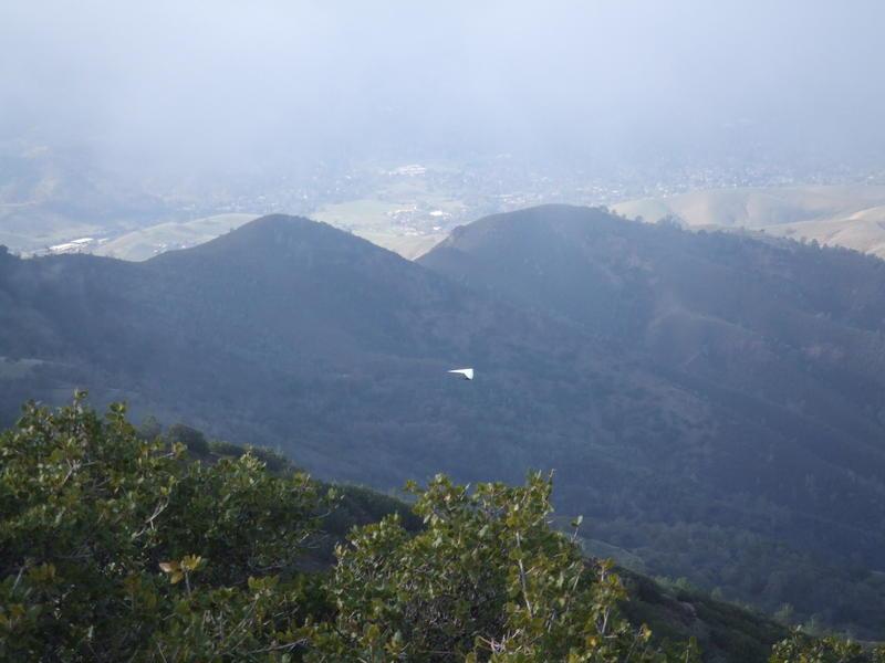 Mt. Diablo dec 08 019.jpg