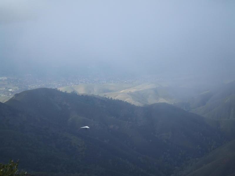 Mt. Diablo dec 08 020.jpg