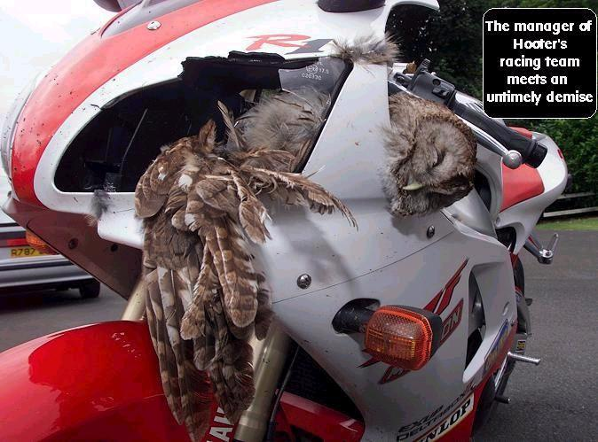 Breaking News Manager Of Hooters Killed By Race Bike Driver