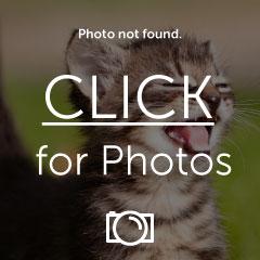 PICT1208.jpg