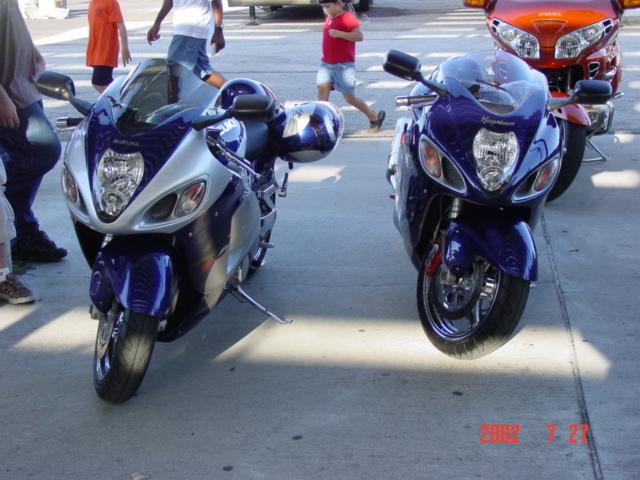 Purple_and_Rambler.JPG