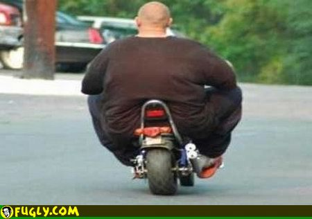 super-fat-man-on-a-scooter.jpg